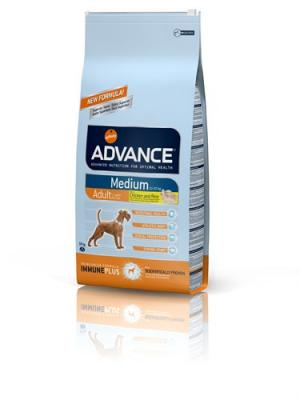 ADVANCE C ADULT MEDIUM CHIEN