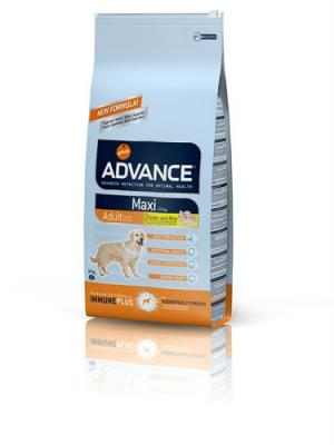 ADVANCE C ADULT MAXI CHIEN
