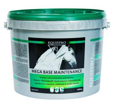 EQUISTRO MEGA BASE MAINTENANCE