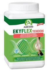 EKYFLEX TENDON